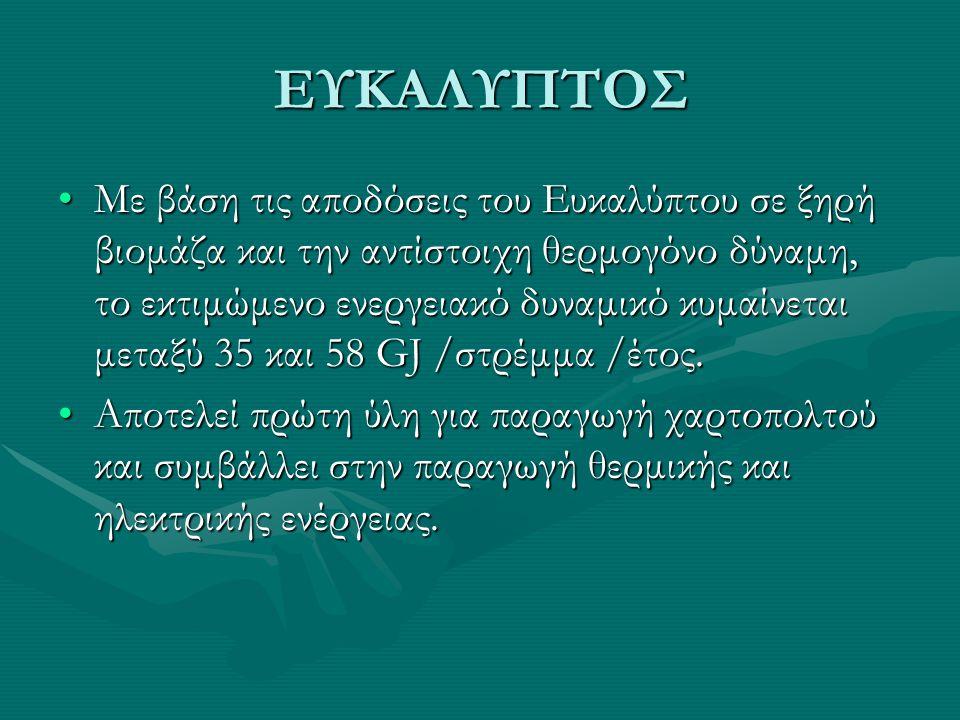 ΕΥΚΑΛΥΠΤΟΣ •Με βάση τις αποδόσεις του Ευκαλύπτου σε ξηρή βιομάζα και την αντίστοιχη θερμογόνο δύναμη, το εκτιμώμενο ενεργειακό δυναμικό κυμαίνεται μεταξύ 35 και 58 GJ /στρέμμα /έτος.