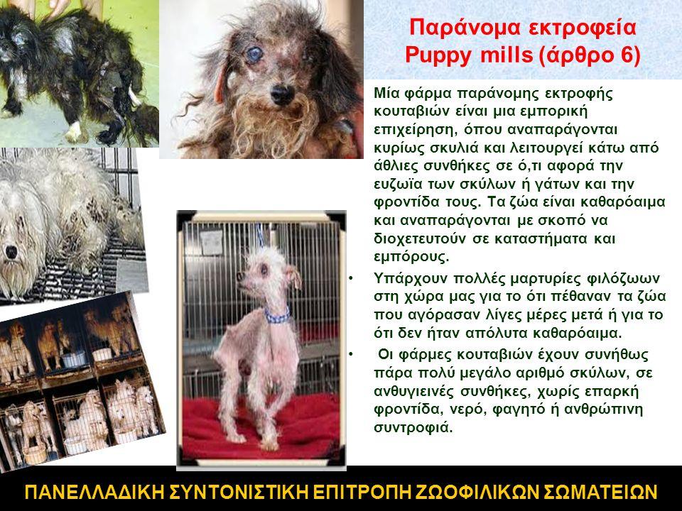 Παράνομα εκτροφεία Puppy mills (άρθρο 6) •Μία φάρμα παράνομης εκτροφής κουταβιών είναι μια εμπορική επιχείρηση, όπου αναπαράγονται κυρίως σκυλιά και λ