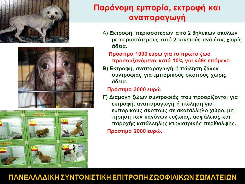 Παράνομη εμπορία, εκτροφή και αναπαραγωγή Α) Εκτροφή περισσότερων από 2 θηλυκών σκύλων με περισσότερους από 2 τοκετούς ανά έτος χωρίς άδεια. Πρόστιμο