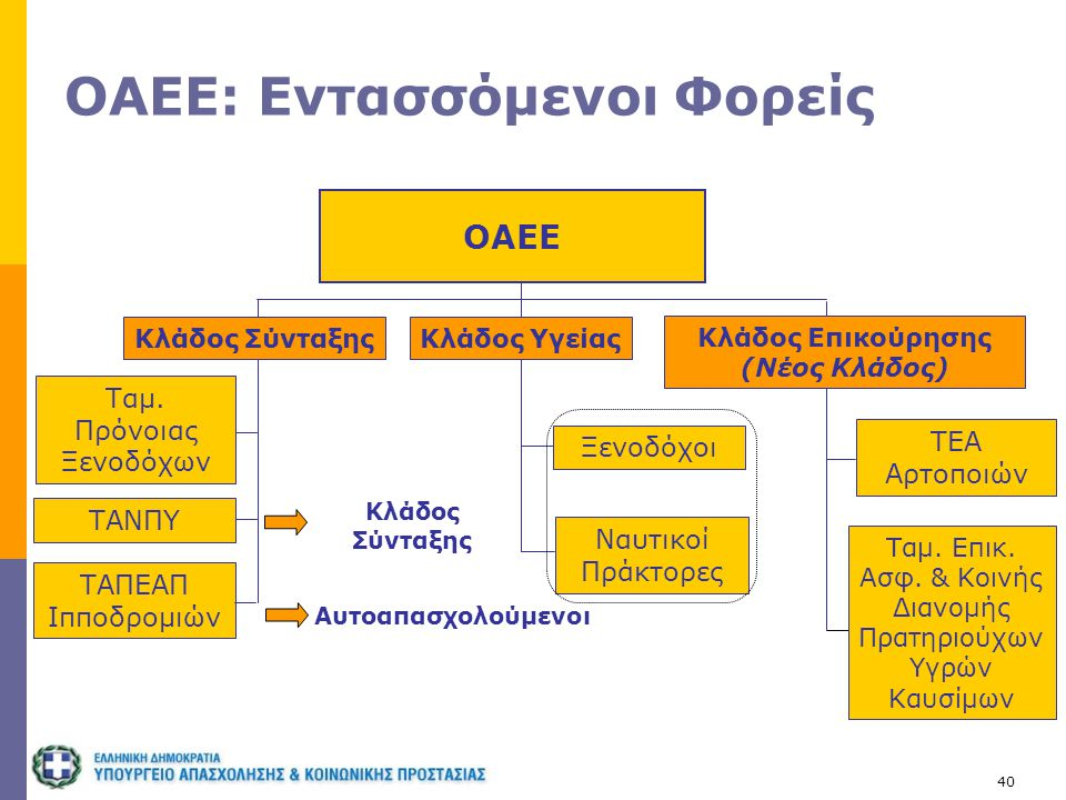 40 ΟΑΕΕ: Εντασσόμενοι Φορείς ΟΑΕΕ Ταμ. Επικ. Ασφ. & Κοινής Διανομής Πρατηριούχων Υγρών Καυσίμων ΤΕΑ Αρτοποιών Κλάδος Σύνταξης Κλάδος Επικούρησης (Νέος