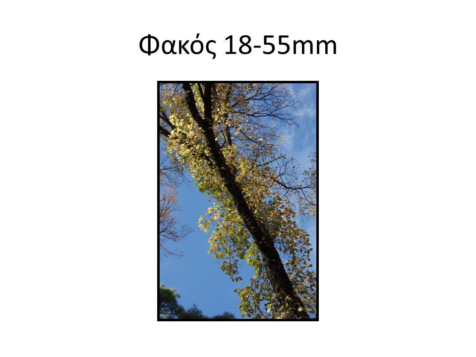Ανοικτό διάφραγμα 5.6 – Μικρό βάθος πεδίου