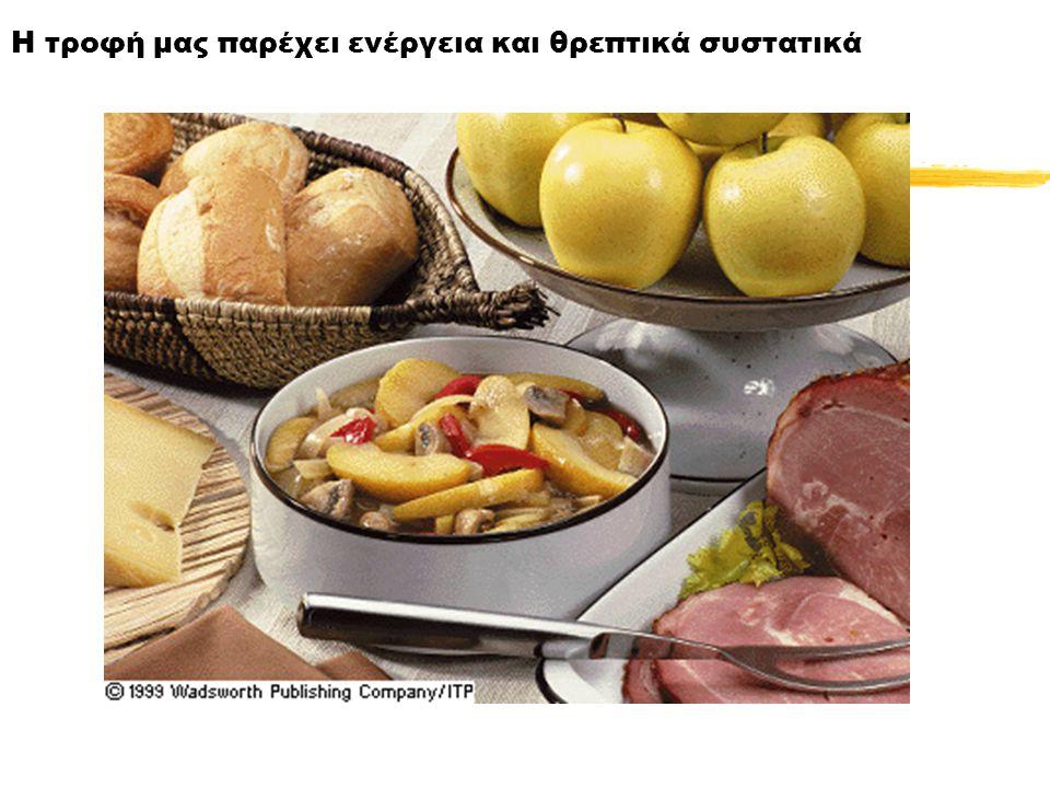 Εάν τα τρόφιμα δεν υποστούν πέψη και δεν απορροφηθούν, αποβάλλονται, οπότε δεν παρέχουν θρεπτικές ουσίες