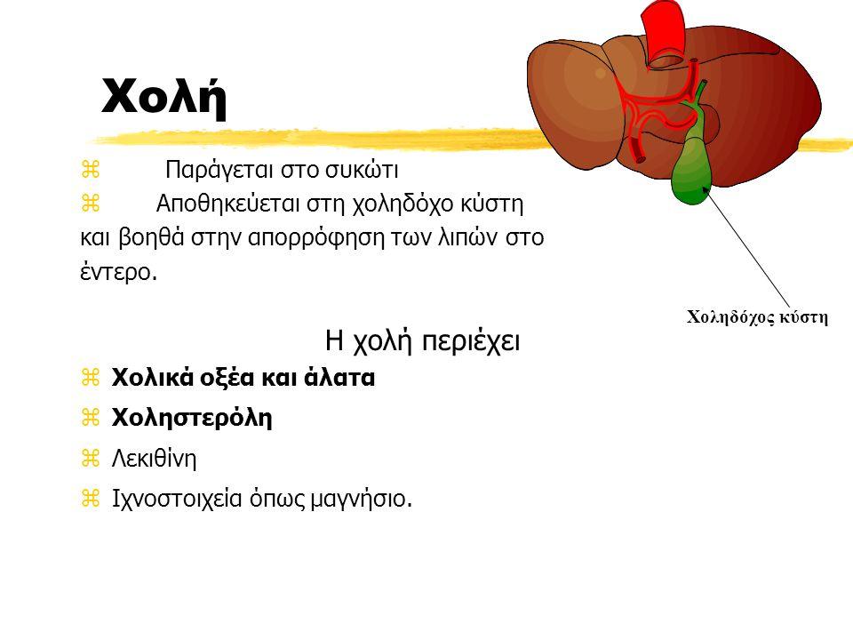 Χολή zΠαράγεται στο συκώτι z Αποθηκεύεται στη χοληδόχο κύστη και βοηθά στην απορρόφηση των λιπών στο έντερο.