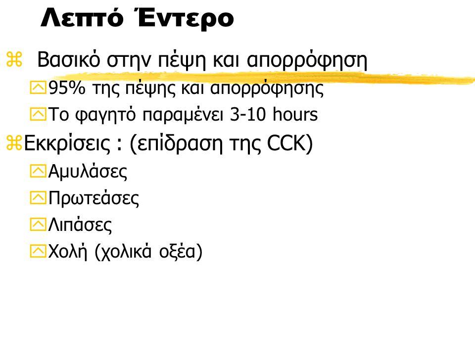 Λεπτό Έντερο z Βασικό στην πέψη και απορρόφηση y95% της πέψης και απορρόφησης yΤο φαγητό παραμένει 3-10 hours zΕκκρίσεις : (επίδραση της CCK) yΑμυλάσες yΠρωτεάσες yΛιπάσες yΧολή (χολικά οξέα)