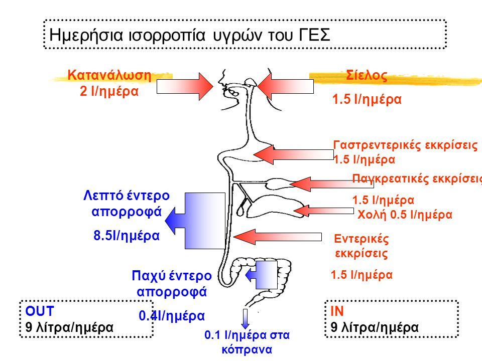Παχύ έντερο απορροφά 0.4l/ημέρα Λεπτό έντερο απορροφά 8.5l/ημέρα Κατανάλωση 2 l/ημέρα Σίελος 1.5 l/ημέρα Γαστρεντερικές εκκρίσεις 1.5 l/ημέρα Χολή 0.5 l/ημέρα Παγκρεατικές εκκρίσεις 1.5 l/ημέρα Εντερικές εκκρίσεις 1.5 l/ημέρα Ημερήσια ισορροπία υγρών του ΓΕΣ IN 9 λίτρα/ημέρα OUT 9 λίτρα/ημέρα 0.1 l/ημέρα στα κόπρανα