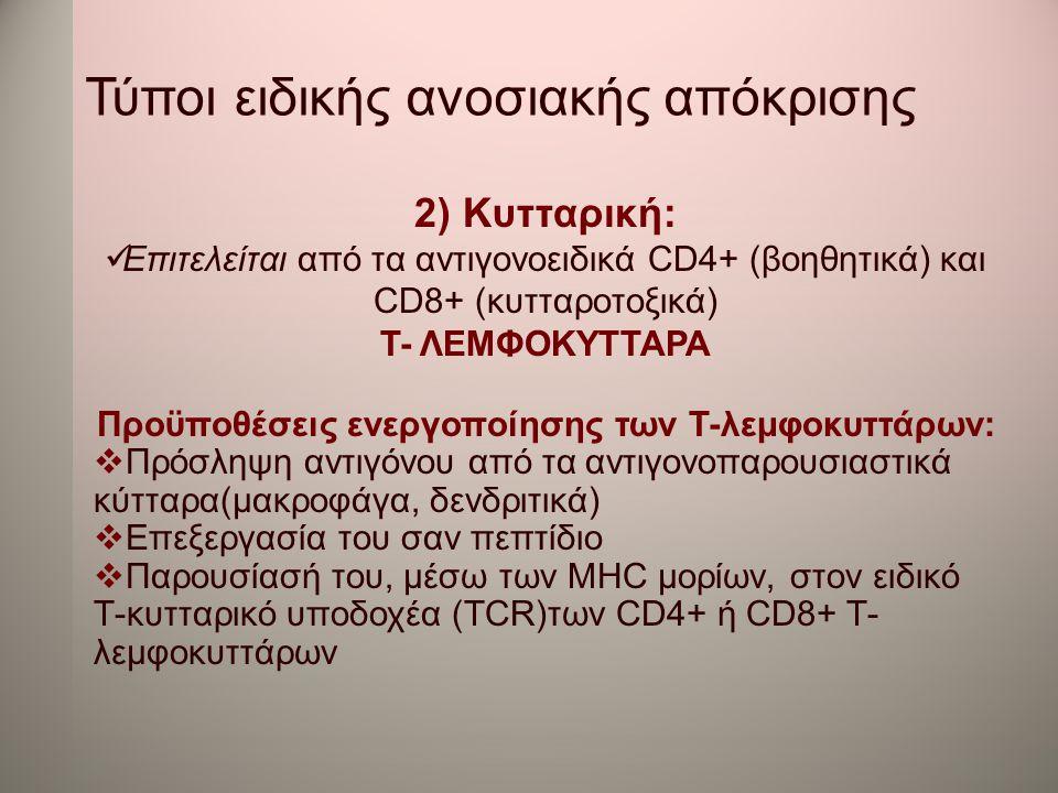 Τύποι ειδικής ανοσιακής απόκρισης 2) Κυτταρική:  Επιτελείται από τα αντιγονοειδικά CD4+ (βοηθητικά) και CD8+ (κυτταροτοξικά) Τ- ΛΕΜΦΟΚΥΤΤΑΡΑ Προϋποθέ