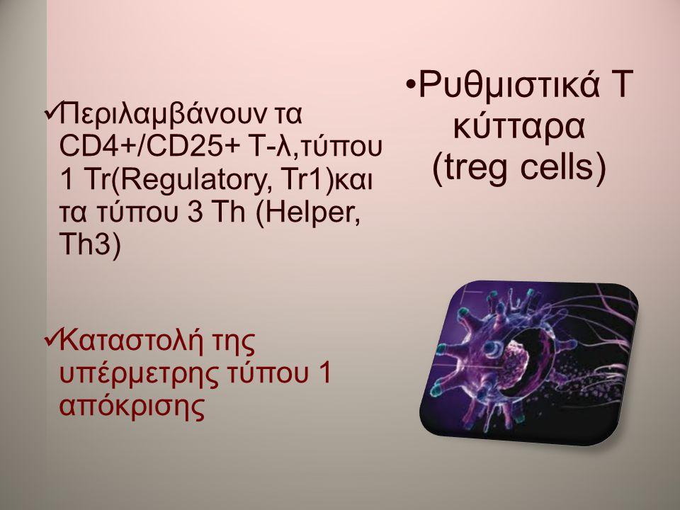 •Ρυθμιστικά Τ κύτταρα (treg cells)  Περιλαμβάνουν τα CD4+/CD25+ Τ-λ,τύπου 1 Tr(Regulatory, Tr1)και τα τύπου 3 Th (Helper, Th3)  Καταστολή της υπέρμε