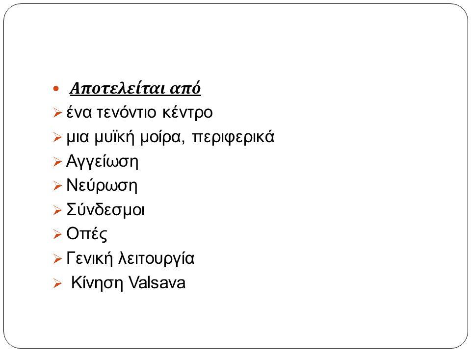 Βιβλιογραφία  Anatomy TV.