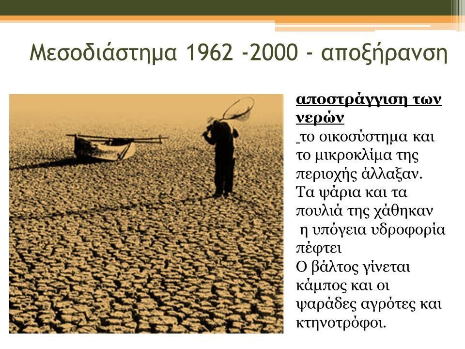Μεσοδιάστημα 1962 -2000 - αποξήρανση αποστράγγιση των νερών το οικοσύστημα και το μικροκλίμα της περιοχής άλλαξαν.