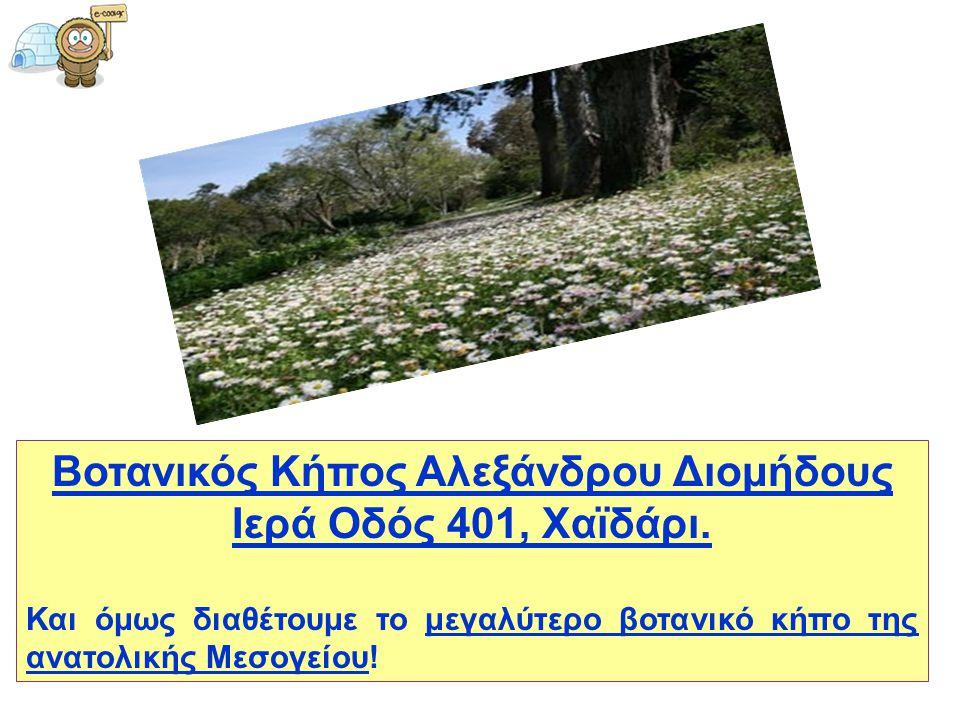 Βοτανικός Κήπος Αλεξάνδρου Διομήδους Ιερά Οδός 401, Χαϊδάρι. Και όμως διαθέτουμε το μεγαλύτερο βοτανικό κήπο της ανατολικής Μεσογείου!