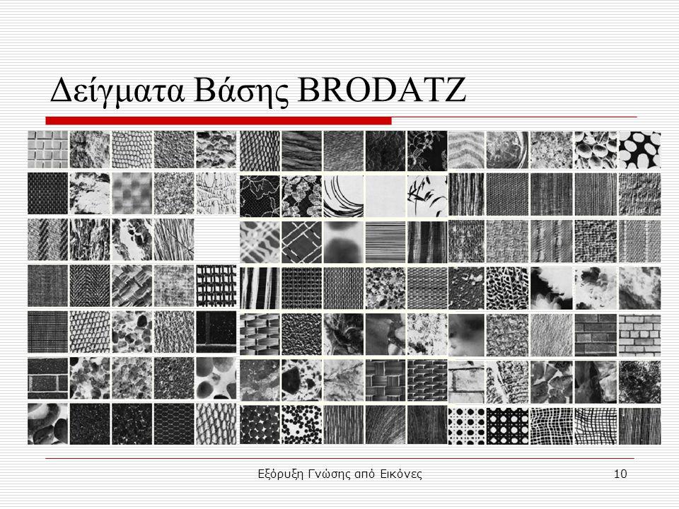 Εξόρυξη Γνώσης από Εικόνες10 Δείγματα Βάσης BRODATZ