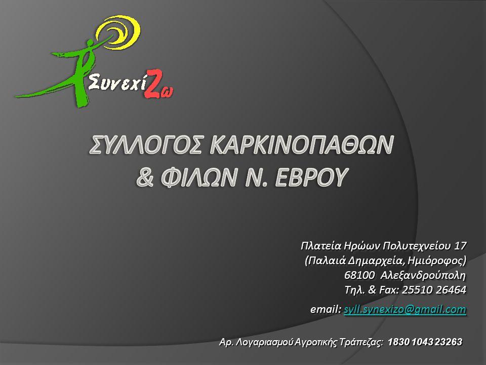 ε, και…. Πλατεία Ηρώων Πολυτεχνείου 17 (Παλαιά Δημαρχεία, Ημιόροφος) 68100 Αλεξανδρούπολη Τηλ. & Fax: 25510 26464 email: syll.synexizo@gmail.com syll.