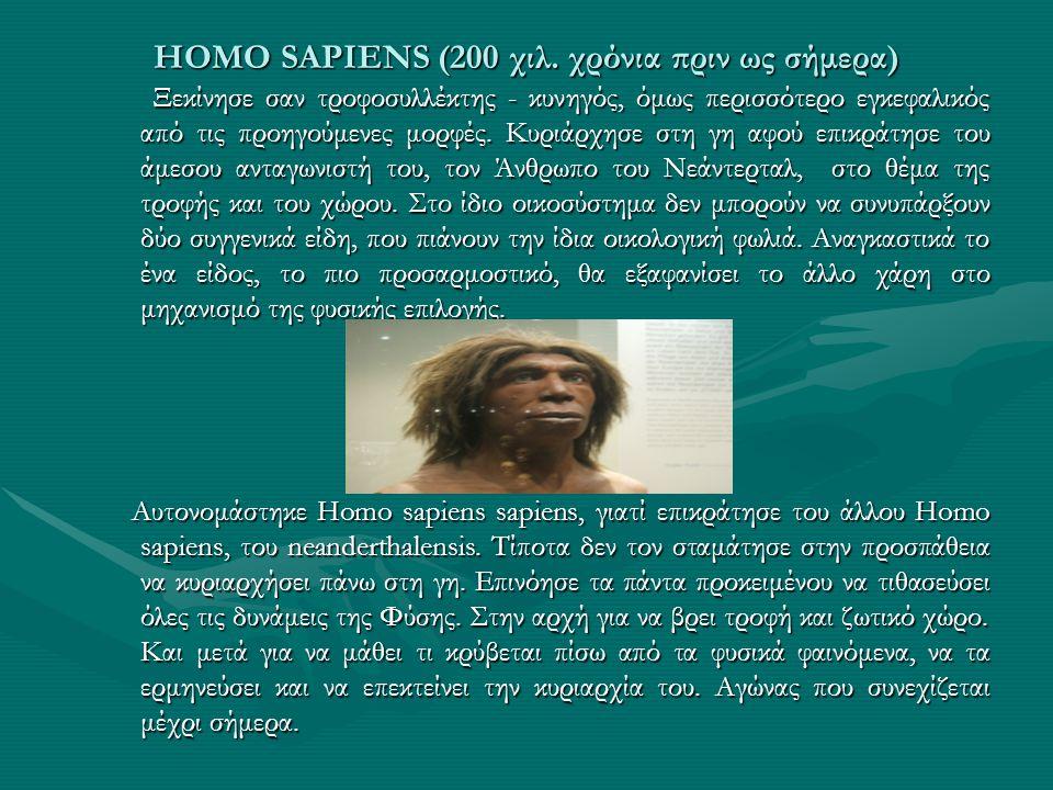ΗΟΜΟ SAPIENS (200 χιλ. χρόνια πριν ως σήμερα) Ξεκίνησε σαν τροφοσυλλέκτης - κυνηγός, όμως περισσότερο εγκεφαλικός από τις προηγούμενες μορφές. Κυριάρχ