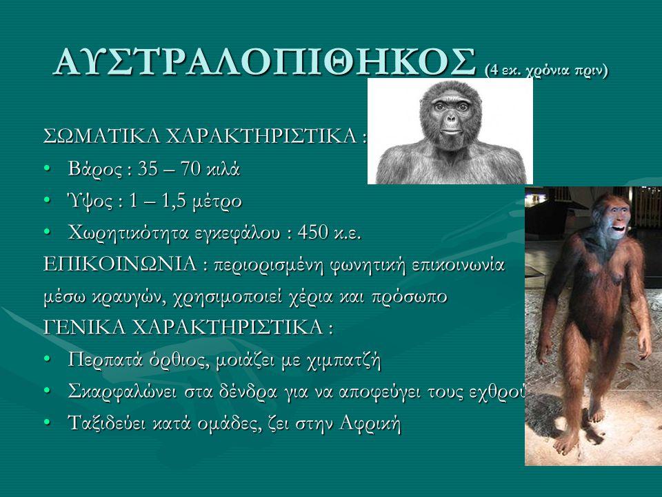ΑΥΣΤΡΑΛΟΠΙΘΗΚΟΣ (4 εκ. χρόνια πριν) ΣΩΜΑΤΙΚΑ ΧΑΡΑΚΤΗΡΙΣΤΙΚΑ : •Βάρος : 35 – 70 κιλά •Ύψος : 1 – 1,5 μέτρο •Χωρητικότητα εγκεφάλου : 450 κ.ε. ΕΠΙΚΟΙΝΩΝ