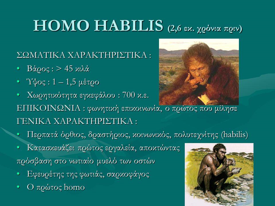 HOMO HABILIS (2,6 εκ. χρόνια πριν) ΣΩΜΑΤΙΚΑ ΧΑΡΑΚΤΗΡΙΣΤΙΚΑ : •Βάρος : > 45 κιλά •Ύψος : 1 – 1,5 μέτρο •Χωρητικότητα εγκεφάλου : 700 κ.ε. ΕΠΙΚΟΙΝΩΝΙΑ :