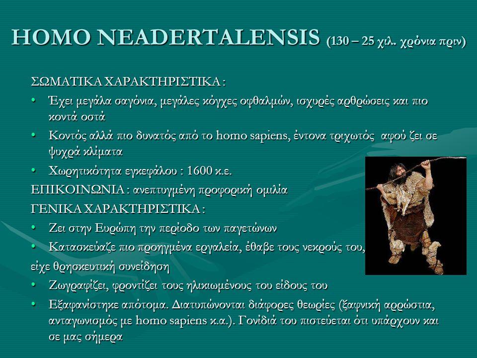 HOMO NEADERTALENSIS (130 – 25 χιλ. χρόνια πριν) ΣΩΜΑΤΙΚΑ ΧΑΡΑΚΤΗΡΙΣΤΙΚΑ : •Έχει μεγάλα σαγόνια, μεγάλες κόγχες οφθαλμών, ισχυρές αρθρώσεις και πιο κον