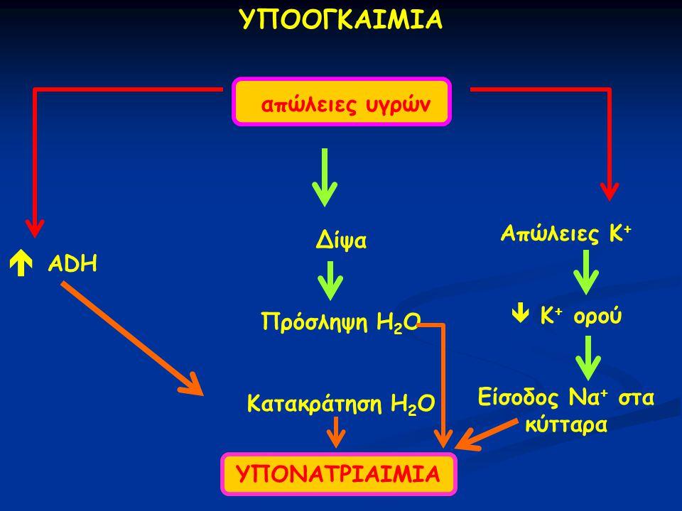ΥΠΟΝΑΤΡΙΑΙΜΙΑ ΥΠΟΟΓΚΑΙΜΙΑ απώλειες υγρών Δίψα Πρόσληψη H 2 O Κατακράτηση H 2 O  ADH Απώλειες Κ +  Κ + ορού Είσοδος Να + στα κύτταρα