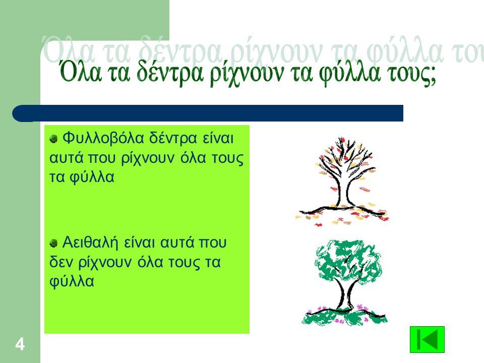 4 Φυλλοβόλα δέντρα είναι αυτά που ρίχνουν όλα τους τα φύλλα Αειθαλή είναι αυτά που δεν ρίχνουν όλα τους τα φύλλα