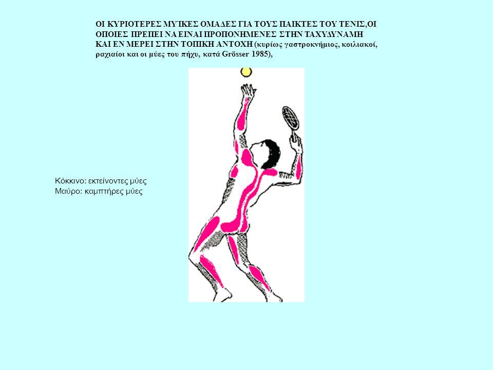 ΟΙ ΚΥΡΙΟΤΕΡΕΣ ΜΥΊΚΕΣ ΟΜΑΔΕΣ ΓΙΑ ΤΟΥΣ ΠΑΙΚΤΕΣ ΤΟΥ ΤΕΝΙΣ,ΟΙ ΟΠΟΙΕΣ ΠΡΕΠΕΙ ΝΑ ΕΙΝΑΙ ΠΡΟΠΟΝΗΜΕΝΕΣ ΣΤΗΝ ΤΑΧΥΔΥΝΑΜΗ ΚΑΙ ΕΝ ΜΕΡΕΙ ΣΤΗΝ ΤΟΠΙΚΗ ΑΝΤΟΧΗ (κυρίως