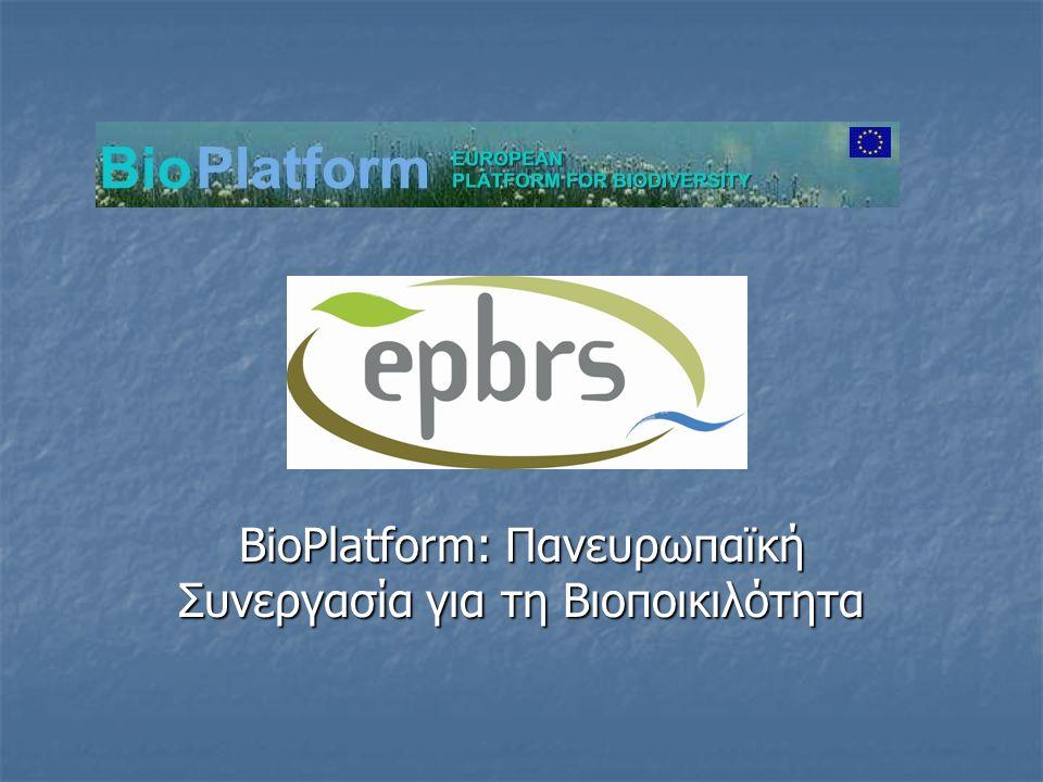  Το BioPlatform είναι ένα δίκτυο συνεργασίας για την προώθηση της έρευνας σε θέματα βιοποικιλότητας  5ο Πρόγραμμα Πλαίσιο, Ευρωπαϊκή Ένωση  Διάρκεια: 2002-2005  Συντονιστές: Centre for Marine and Environmental Research (CIMAR), Πορτογαλία  Συμμετέχουν 28 χώρες  Κύπρος: Μονάδα Περιβαλλοντικών Μελετών (σε συνεργασία με το Τμήμα Δασών και την Υπηρεσία Περιβάλλοντος)