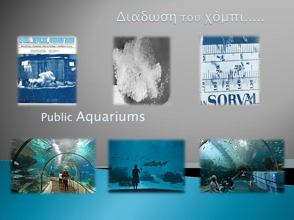 Public Aquariums