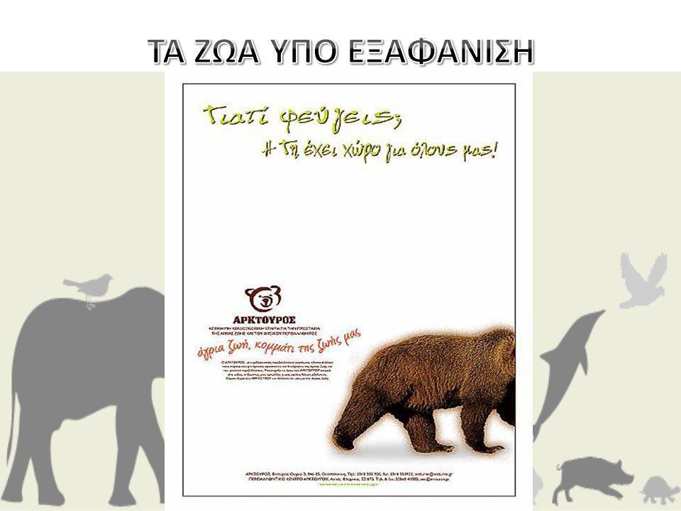 Η Αφίσα του Αρκτούρου θέλει να μας προβληματίσει και να μας κάνει να σκεφτούμε ότι τα ζώα είναι κάτοικοι της Γης όπως και εμείς.