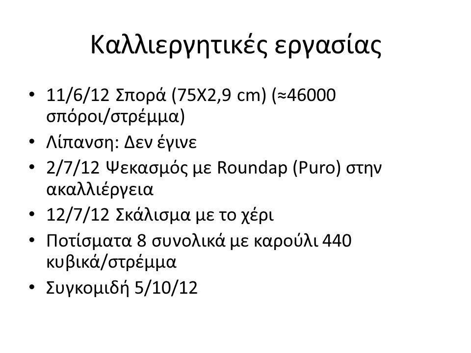 Καλλιεργητικές εργασίας • 11/6/12 Σπορά (75Χ2,9 cm) (≈46000 σπόροι/στρέμμα) • Λίπανση: Δεν έγινε • 2/7/12 Ψεκασμός με Roundap (Puro) στην ακαλλιέργεια