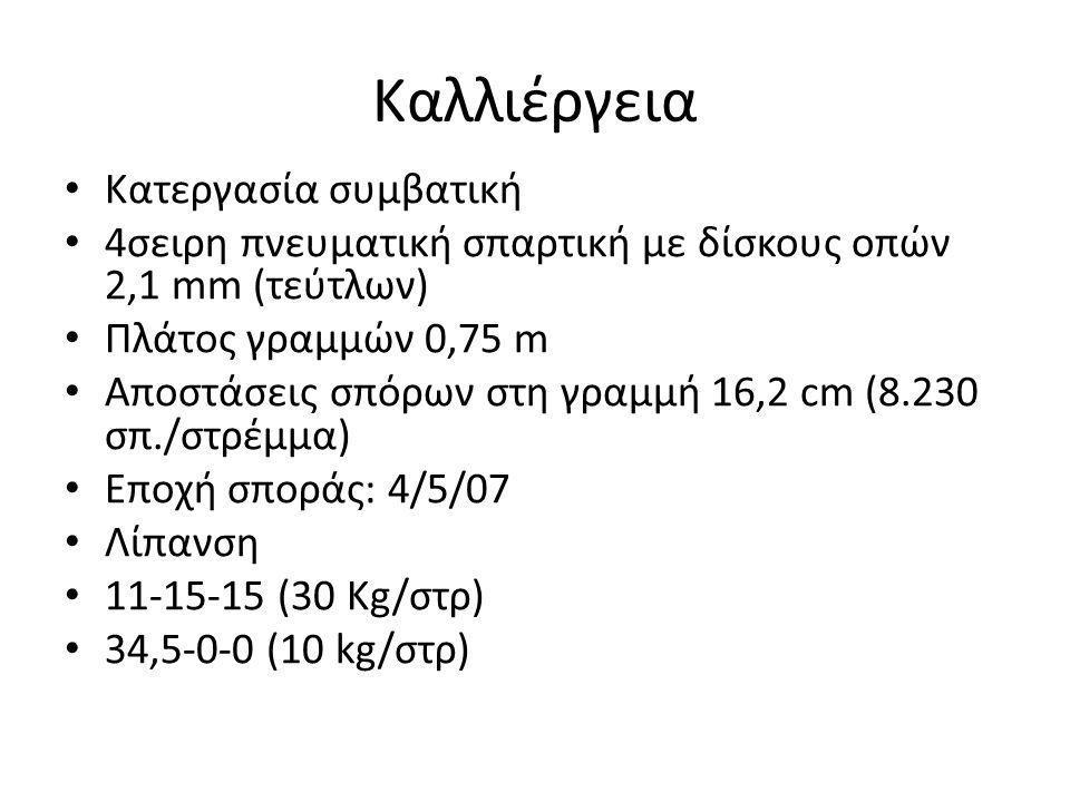 Καλλιέργεια • Κατεργασία συμβατική • 4σειρη πνευματική σπαρτική με δίσκους οπών 2,1 mm (τεύτλων) • Πλάτος γραμμών 0,75 m • Αποστάσεις σπόρων στη γραμμ