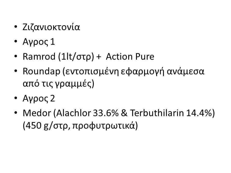 • Ζιζανιοκτονία • Αγρος 1 • Ramrod (1lt/στρ) + Action Pure • Roundap (εντοπισμένη εφαρμογή ανάμεσα από τις γραμμές) • Αγρος 2 • Medor (Alachlor 33.6%
