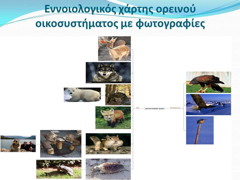 Εννοιολογικός χάρτης ορεινού οικοσυστήματος με φωτογραφίες