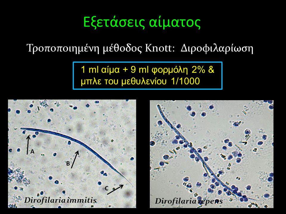 Εξετάσεις αίματος Τροποποιημένη μέθοδος Knott: Διροφιλαρίωση 1 ml αίμα + 9 ml φορμόλη 2% & μπλε του μεθυλενίου 1/1000 Dirofilaria immitis Dirofilaria