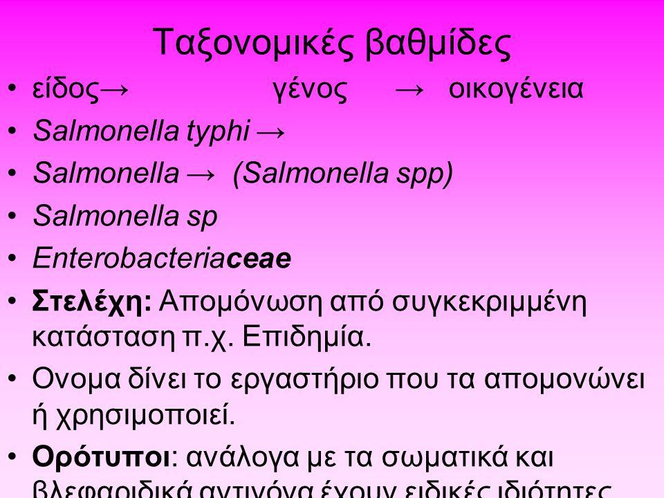 Ταξονομικές βαθμίδες •είδος→ γένος → οικογένεια •Salmonella typhi → •Salmonella → (Salmonella spp) •Salmonella sp •Enterobacteriaceae •Στελέχη: Απομόν