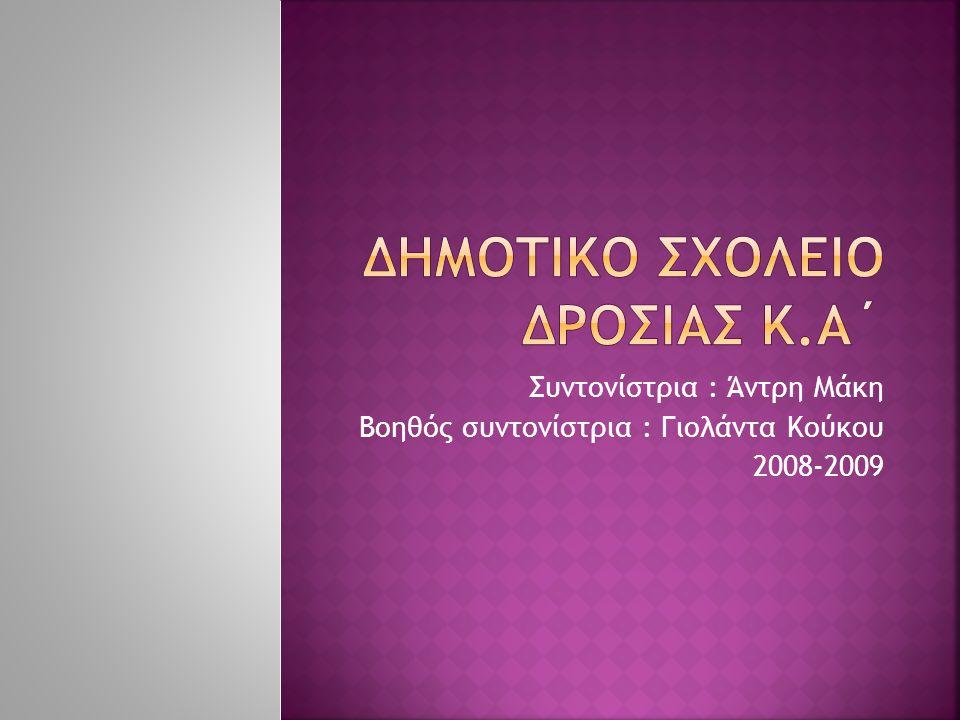 Συντονίστρια : Άντρη Μάκη Βοηθός συντονίστρια : Γιολάντα Κούκου 2008-2009