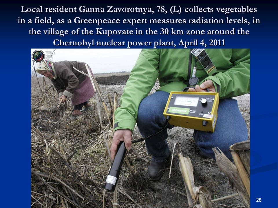 Local resident Ganna Zavorotnya, 78, (L) collects vegetables in a field, as a Greenpeace expert measures radiation levels, in the village of the Kupovate in the 30 km zone around the Chernobyl nuclear power plant, April 4, 2011 28