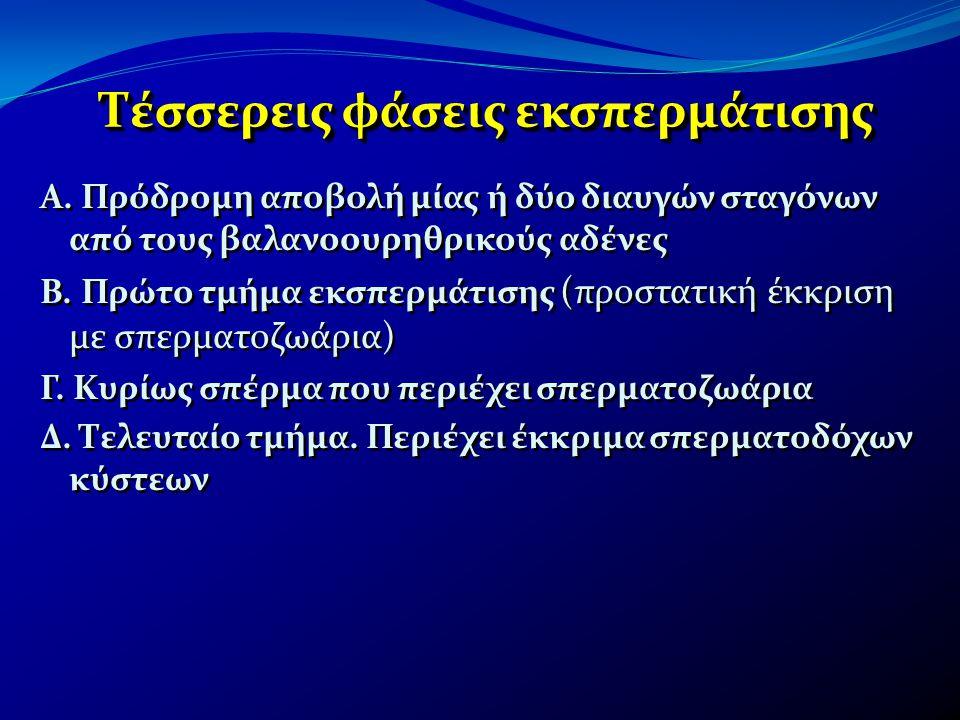 Τέσσερεις φάσεις εκσπερμάτισης Α. Πρόδρομη αποβολή μίας ή δύο διαυγών σταγόνων από τους βαλανοουρηθρικούς αδένες Β. Πρώτο τμήμα εκσπερμάτισης (προστατ