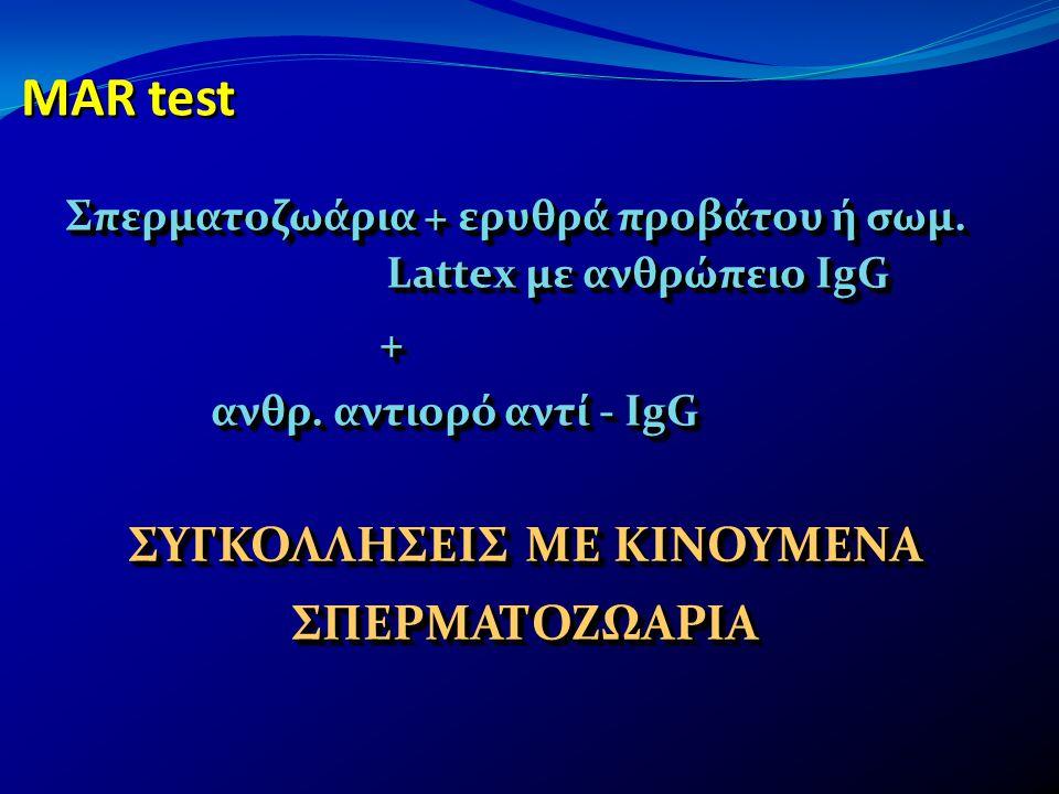 MAR test Σπερματοζωάρια + ερυθρά προβάτου ή σωμ. Lattex με ανθρώπειο IgG + ανθρ. αντιορό αντί - IgG ανθρ. αντιορό αντί - IgG Σπερματοζωάρια + ερυθρά π