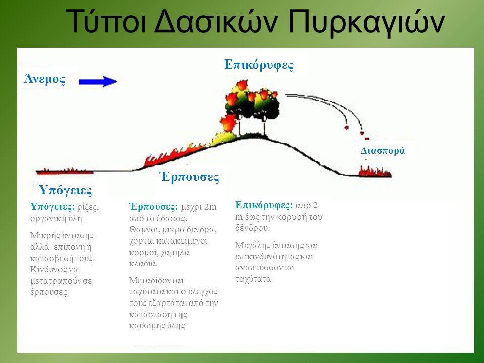 Υπόγειες: ρίζες, οργανική ύλη Μικρής έντασης αλλά επίπονη η κατάσβεσή τους. Κίνδυνος να μετατραπούν σε έρπουσες Έρπουσες: μέχρι 2m από το έδαφος. Θάμν