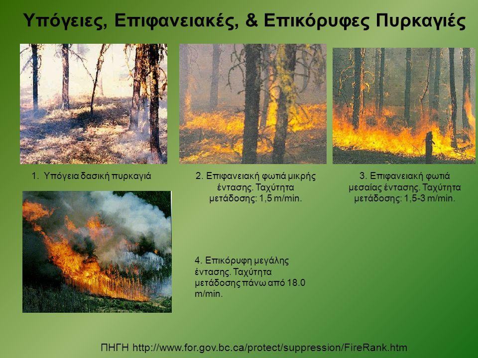 Υπόγειες, Επιφανειακές, & Επικόρυφες Πυρκαγιές ΠΗΓΗ http://www.for.gov.bc.ca/protect/suppression/FireRank.htm 1. Υπόγεια δασική πυρκαγιά2. Επιφανειακή