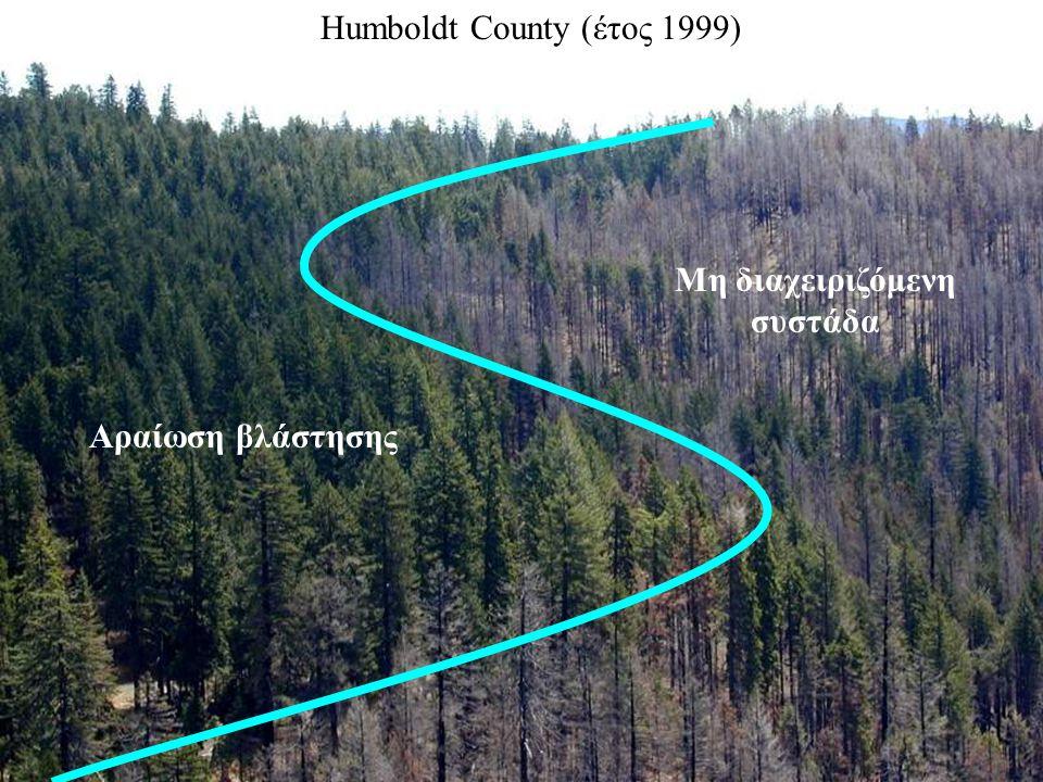 Humboldt County (έτος 1999) Μη διαχειριζόμενη συστάδα Αραίωση βλάστησης