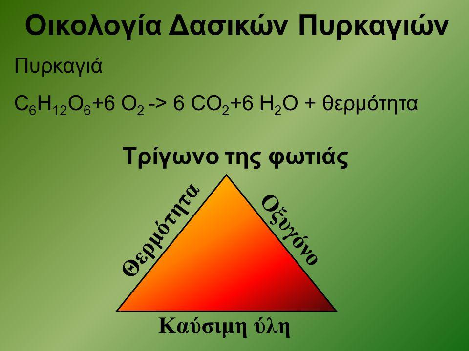 Πυρκαγιά C 6 H 12 O 6 +6 O 2 -> 6 CO 2 +6 H 2 O + θερμότητα Οικολογία Δασικών Πυρκαγιών Θερμότητα Καύσιμη ύλη Οξυγόνο Τρίγωνο της φωτιάς