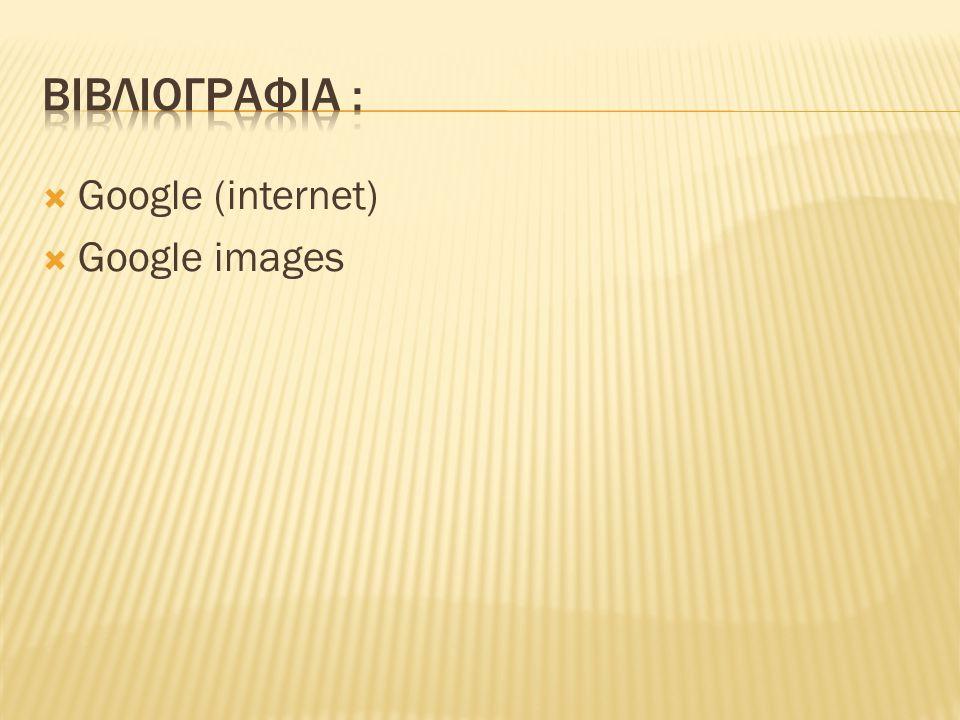  Google (internet)  Google images