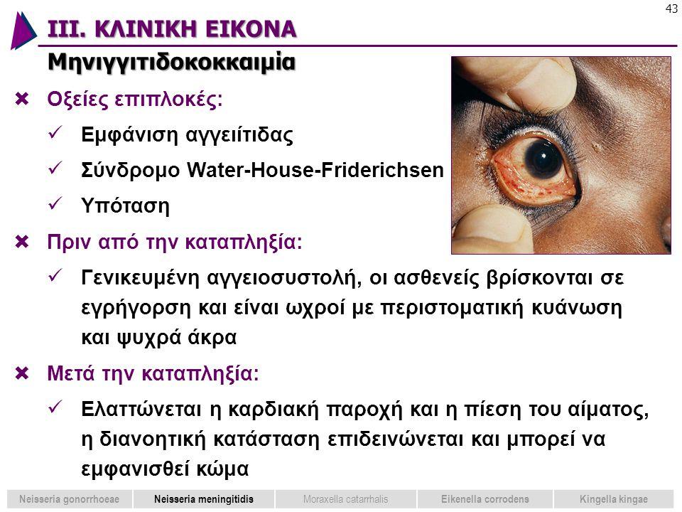 ΙΙΙ. ΚΛΙΝΙΚΗ ΕΙΚΟΝΑ Μηνιγγιτιδοκοκκαιμία 43 Neisseria gonorrhoeaeNeisseria meningitidis Moraxella catarrhalis Eikenella corrodensKingella kingae  Οξε