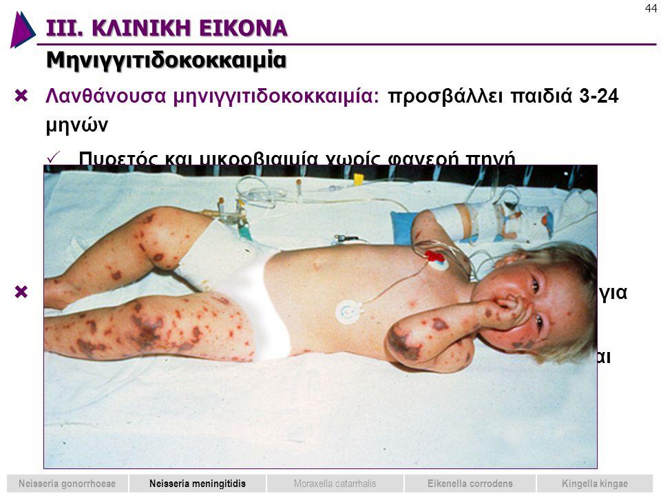 ΙΙΙ. ΚΛΙΝΙΚΗ ΕΙΚΟΝΑ Μηνιγγιτιδοκοκκαιμία 44 Neisseria gonorrhoeaeNeisseria meningitidis Moraxella catarrhalis Eikenella corrodensKingella kingae  Λαν