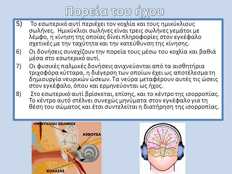 5) Το εσωτερικό αυτί περιέχει τον κοχλία και τους ημικύκλιους σωλήνες. Ημικύκλιοι σωλήνες είναι τρεις σωλήνες γεμάτοι με λέμφο, η κίνηση της οποίας δί