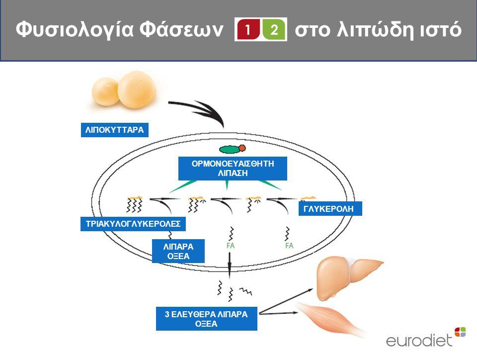 ΛΙΠΟΚΥΤΤΑΡΑ ΟΡΜΟΝΟΕΥΑΙΣΘΗΤΗ ΛΙΠΑΣΗ ΤΡΙΑΚΥΛΟΓΛΥΚΕΡΟΛΕΣ ΛΙΠΑΡΑ ΟΞΕΑ ΓΛΥΚΕΡΟΛΗ 3 ΕΛΕΥΘΕΡΑ ΛΙΠΑΡΑ ΟΞΕΑ Φυσιολογία Φάσεων στο λιπώδη ιστό
