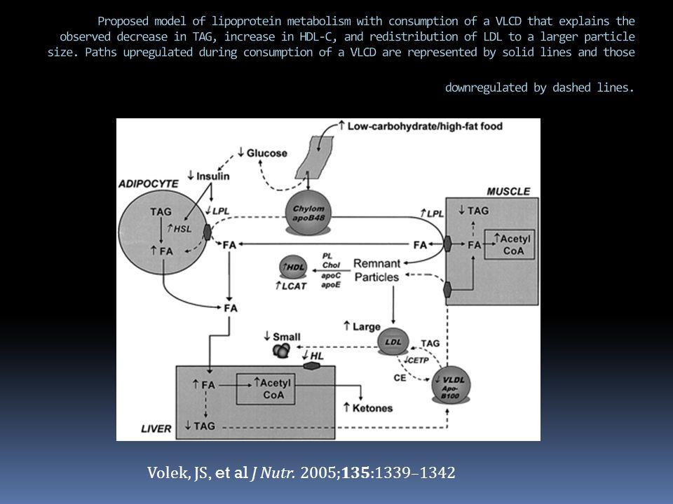 Volek, JS, et al J Nutr. 2005;135:1339–1342