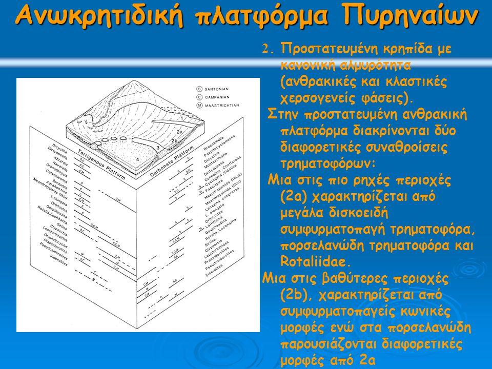 Ανωκρητιδική πλατφόρμα Πυρηναίων 2. Προστατευμένη κρηπίδα με κανονική αλμυρότητα (ανθρακικές και κλαστικές χερσογενείς φάσεις). Στην προστατευμένη ανθ