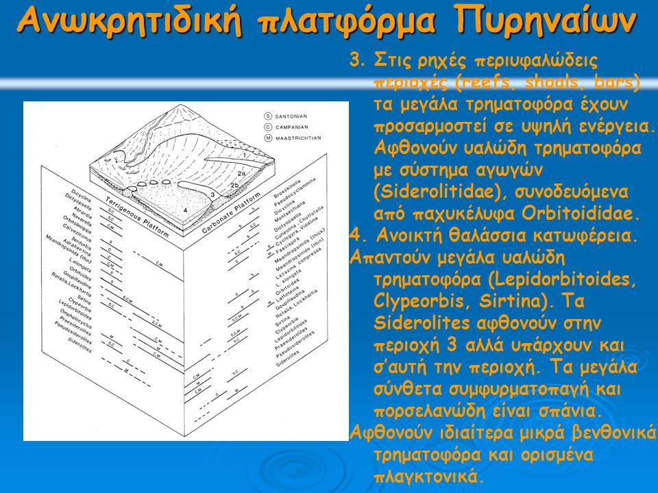 Ανωκρητιδική πλατφόρμα Πυρηναίων 3.