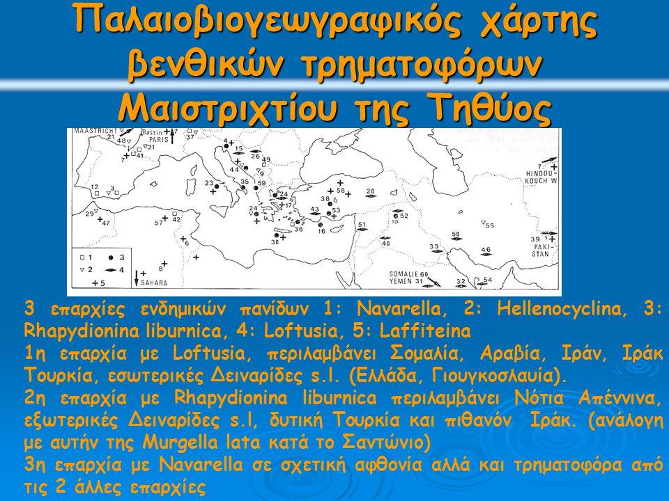 Παλαιοβιογεωγραφικός χάρτης βενθικών τρηματοφόρων Μαιστριχτίου της Τηθύος 3 επαρχίες ενδημικών πανίδων 1: Navarella, 2: Hellenocyclina, 3: Rhapydionina liburnica, 4: Loftusia, 5: Laffiteina 1η επαρχία με Loftusia, περιλαμβάνει Σομαλία, Αραβία, Ιράν, Ιράκ Τουρκία, εσωτερικές Δειναρίδες s.l.