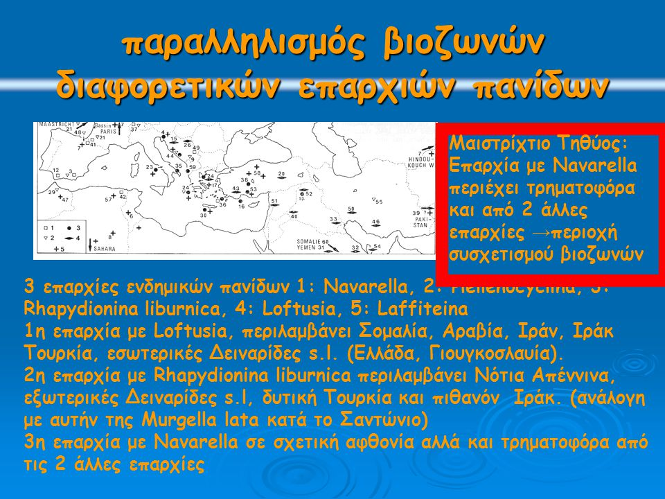 παραλληλισμός βιοζωνών διαφορετικών επαρχιών πανίδων 3 επαρχίες ενδημικών πανίδων 1: Navarella, 2: Hellenocyclina, 3: Rhapydionina liburnica, 4: Loftu